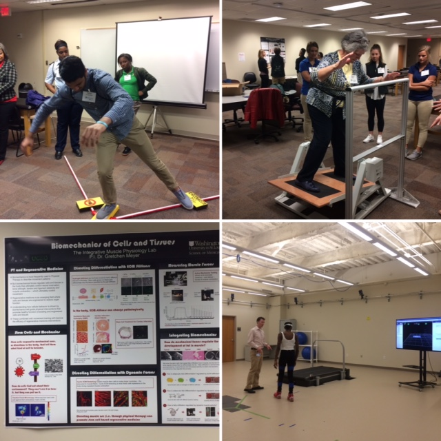 National Biomechanics Day Photo